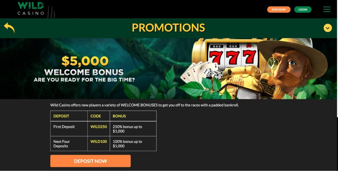 wild-casino-promotions