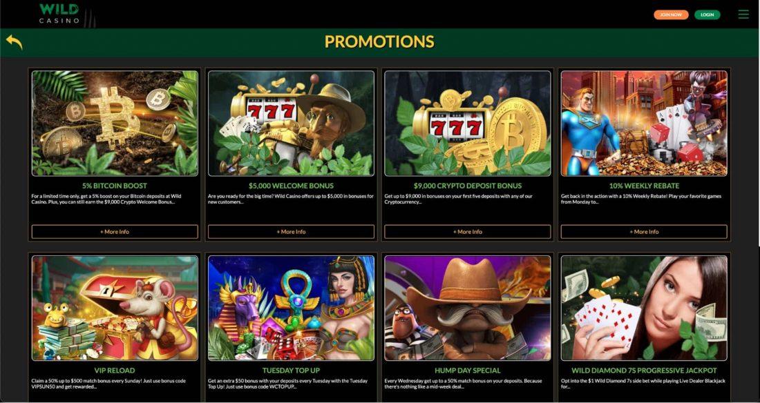 wild-casino-bonuses-and-promotions