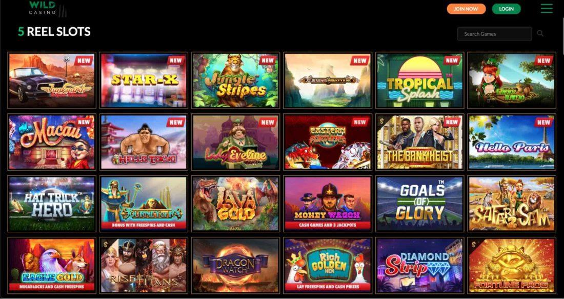 wild-casino-games-offered
