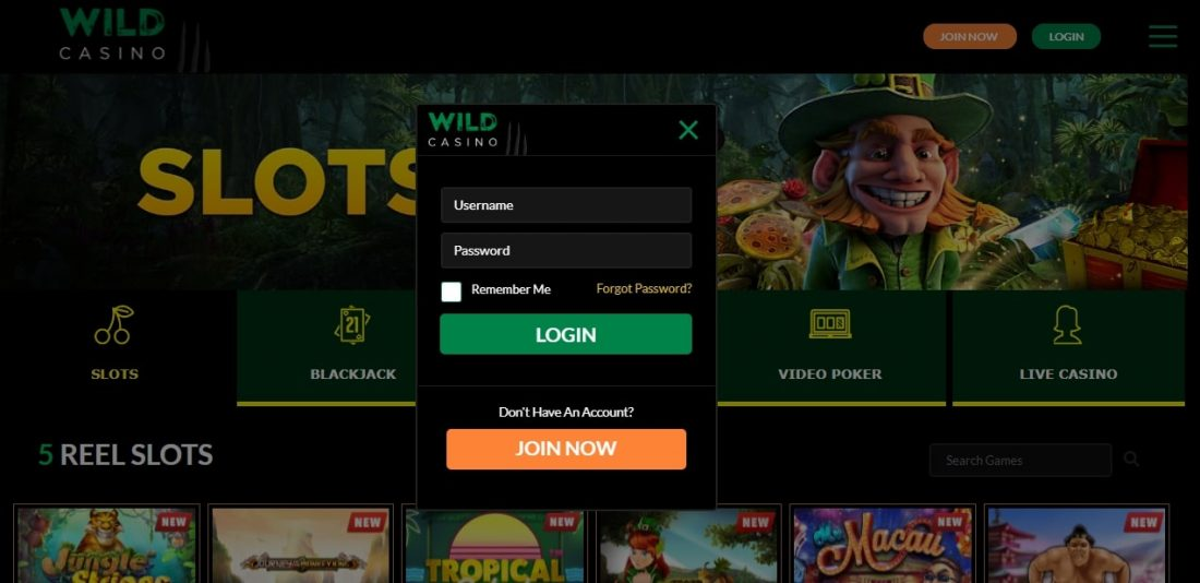 wild-casino-login-process