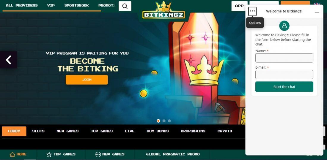 BitKingz Casino Customer Support