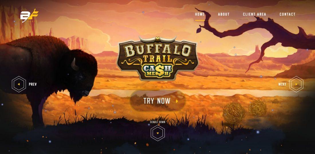 BF Games Gaming Software